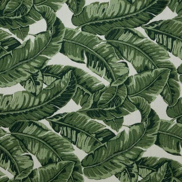 Tropics-Jungle_145214-0000